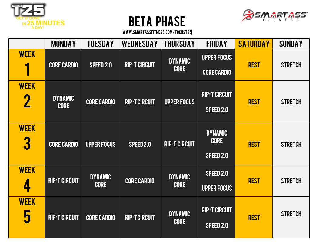 Focus T25 Beta Schedule